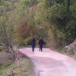 kasol in spring time 1