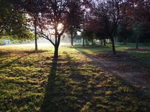 En solopgang kan give en smuk morgenløbetur