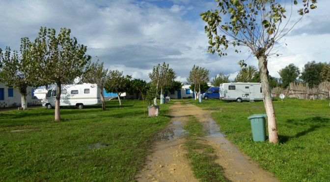 Camping Assaada in Asilah
