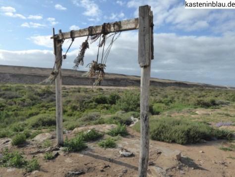 Gestell zum Kamelschlachten