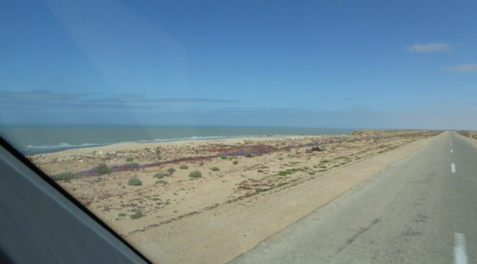 Wohnmobiltour durch die West-Sahara: Unser Fazit !