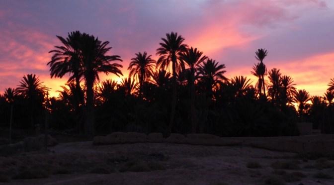 Oase Tighmert im Süden von Marokko