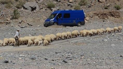 Dadesschlucht Marokko