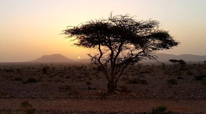 Roadtrip Marokko Teil 9: Assa