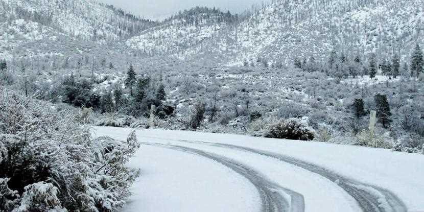 snow.jpg?fit=830%2C415&ssl=1