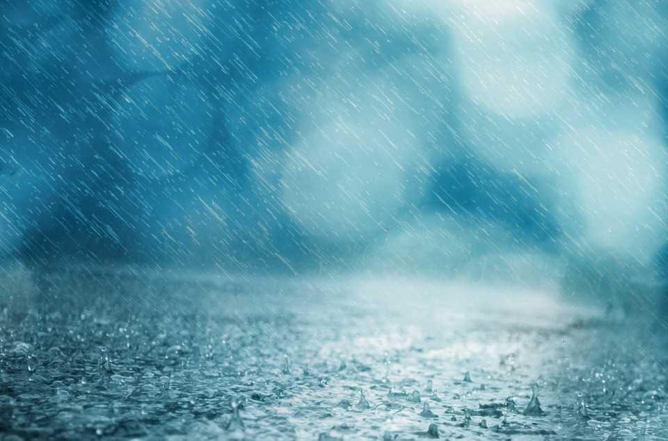 rain-316579_960_720.jpg?fit=960%2C635&ssl=1