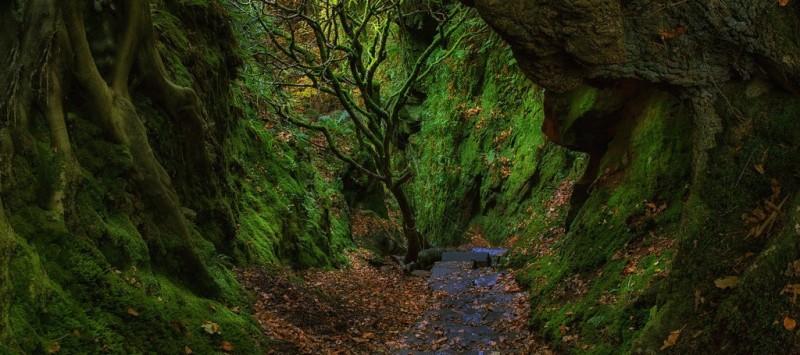 Beautiful Walking Trails And Hikes To Take Around Glasgow