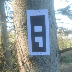 reference marker on a tree