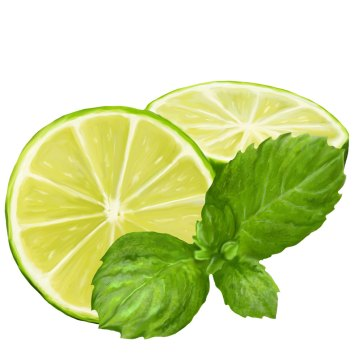 Mohito - limonka z miętą