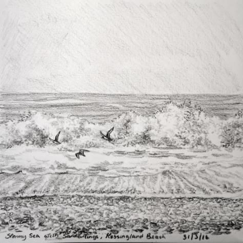 Sanderlings fly past sketch 152