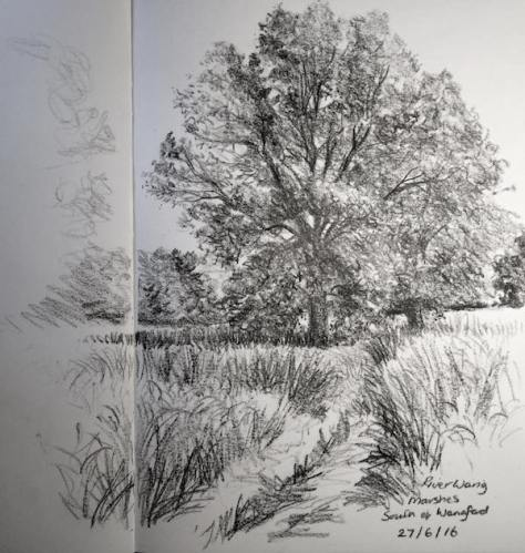 Wangford marshes sketch 179