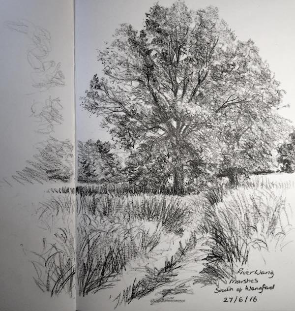 Wangford marshes sketch 179