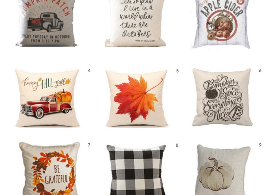 Affordable Fall Decor: 25 Pillows Under $25