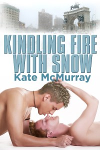 Kindling Fire with Snow Cover
