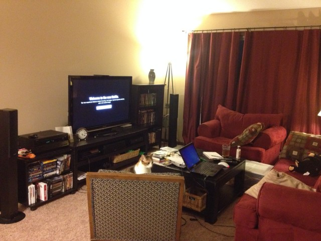 living room w/new movie shelf.