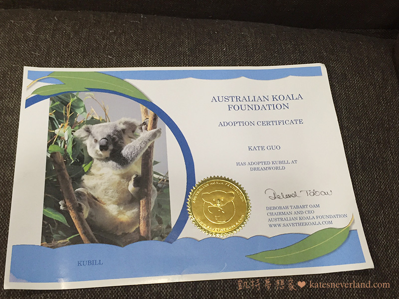 在Australian Koala Foundation 認養無尾熊Kubill 的證書 | Kate's neverland