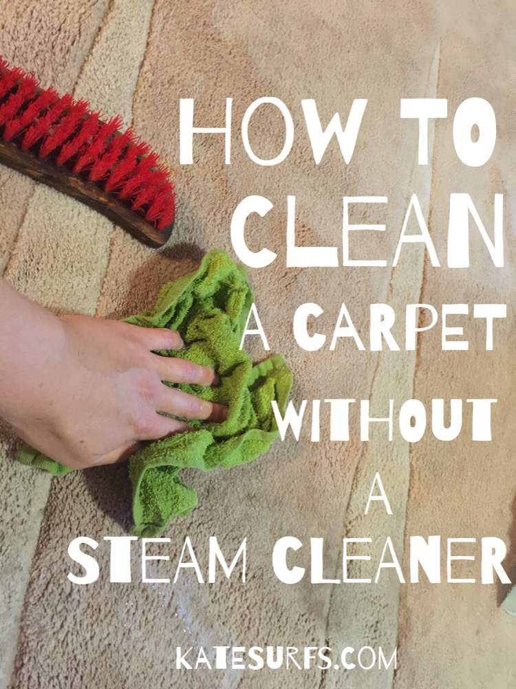 How to naturally clean a carpet without a steam cleaner katesurfs when youre on a single income and you dont have the money to buy or rent a steam cleaner its pretty much up to elbow grease to get your carpet clean solutioingenieria Choice Image