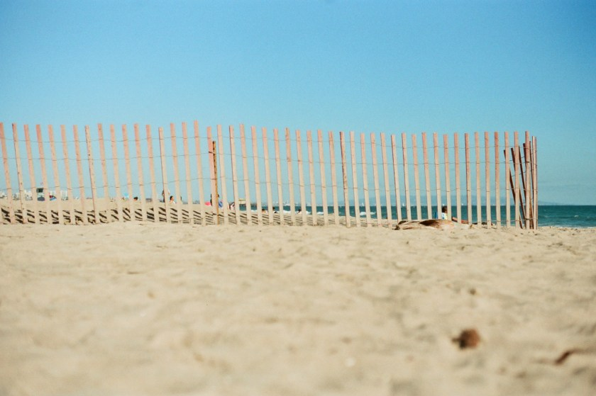 film photography of wooden fence on beach