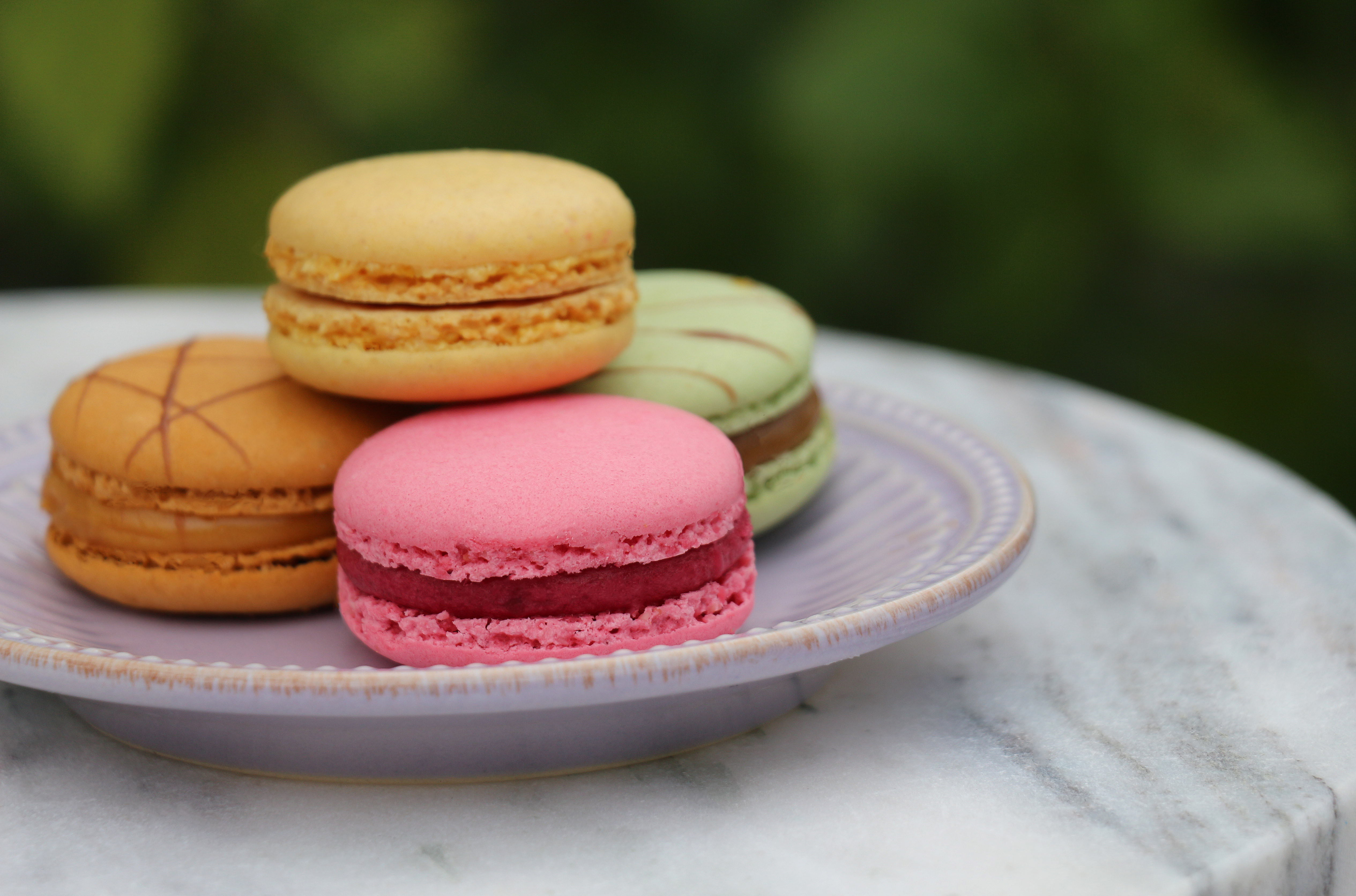 – 4 a french macaroons fruit food photographer katherine eastman miami Photography fine cooking baking rainbow multicolor_01