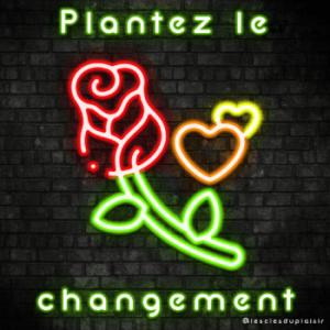 Plantez changement