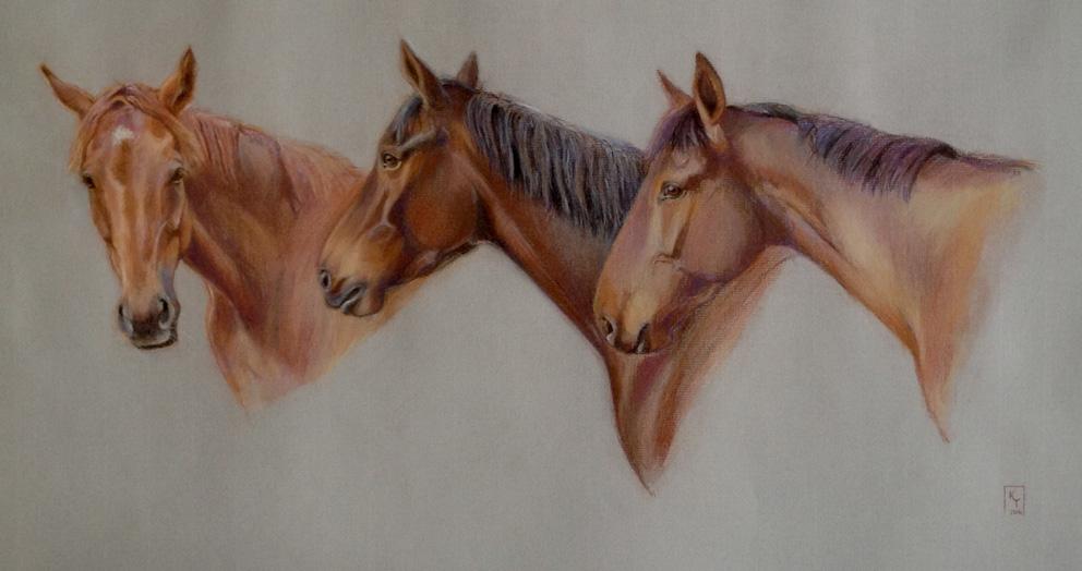horse portrait pastel