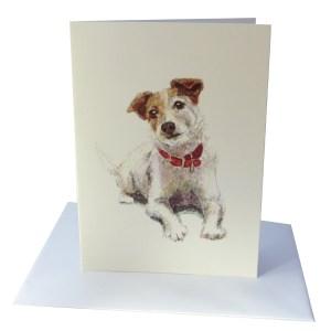 jack russell terrier greetings card