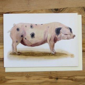Animal Greetings Cards