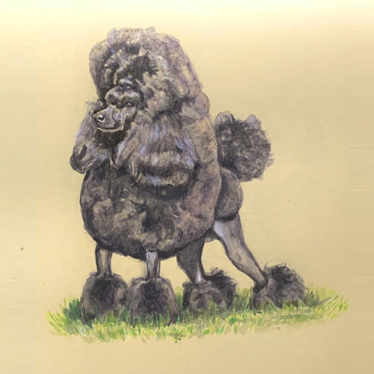 miniature poodle painting
