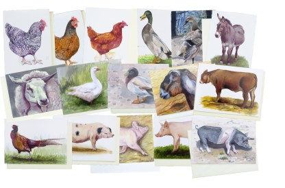 Bundle of Clearance Animal Greetings Cards