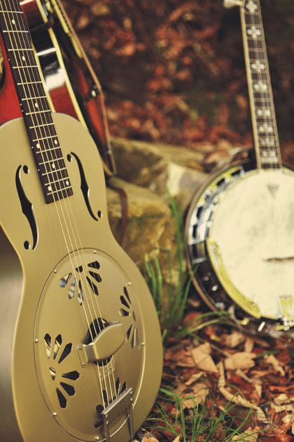 Instrumente_Wald_4