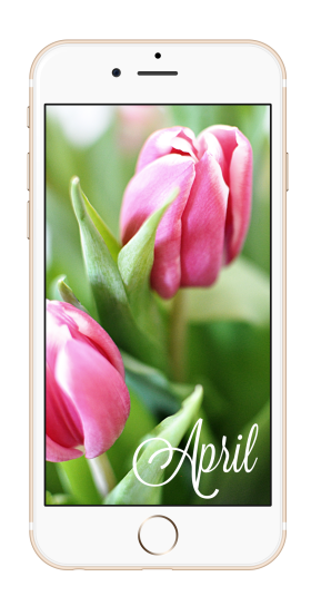 Wallpaper April 2015 | Kathie's Cloud