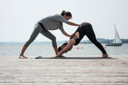 Yoga Yogi