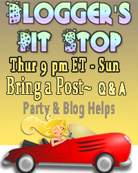 The Blogger's Pit Stop