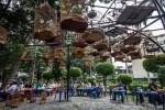 Bird Cafe Tao Dan Park Ho Chi Minh City Vietnam (2)