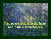 Finding True Peace