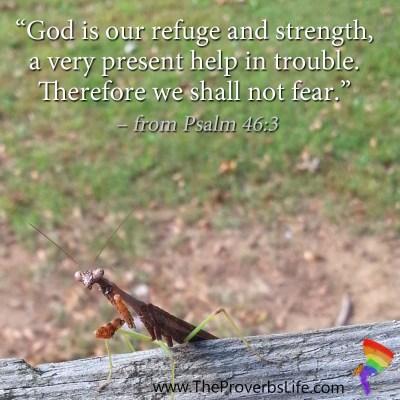 Scripture Focus - Psalm 46:3