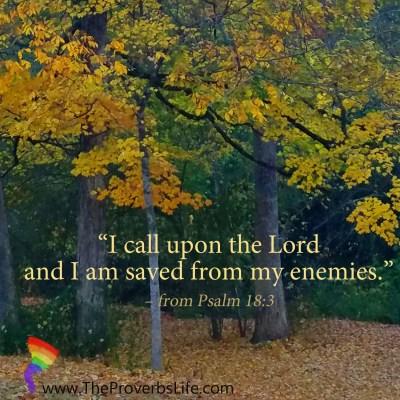 Scripture Focus Psalm 18:3