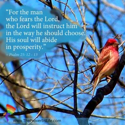 Scripture Focus - Psalm 25: 12 - 13
