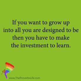 The Proverbs Life Quote - investment in learning