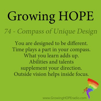 Growing HOPE Daily - 5 Points - compass of unique design