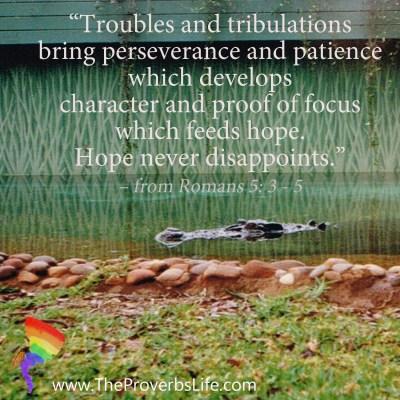 Scripture Focus Romans 5:3-5