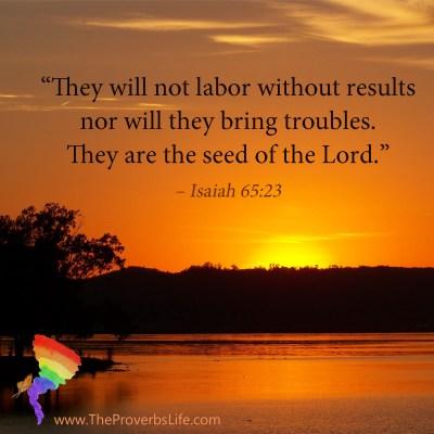 Scripture Focus Isaiah 65:23
