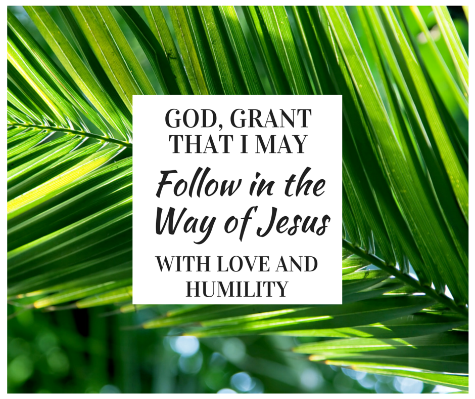 Follow the Way of Jesus