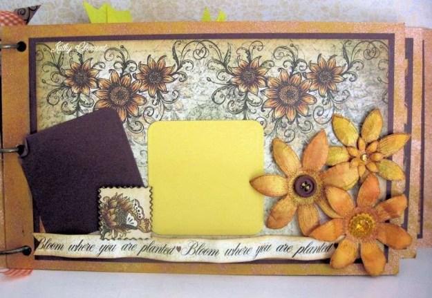 Classic Sunflower Album 09a
