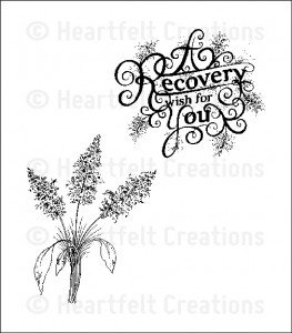 Recovery Wishes