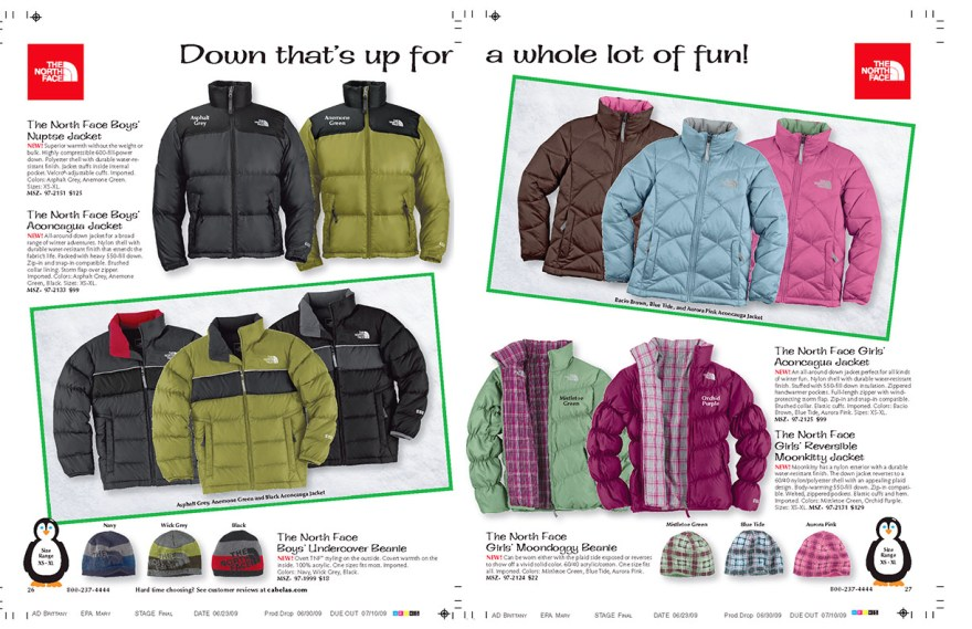 Down Headline_The North Face