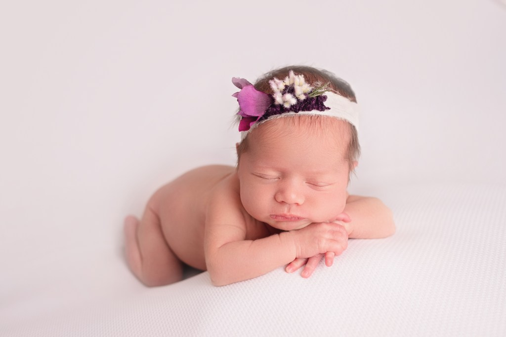 Mt Clemens Newborn Photographer