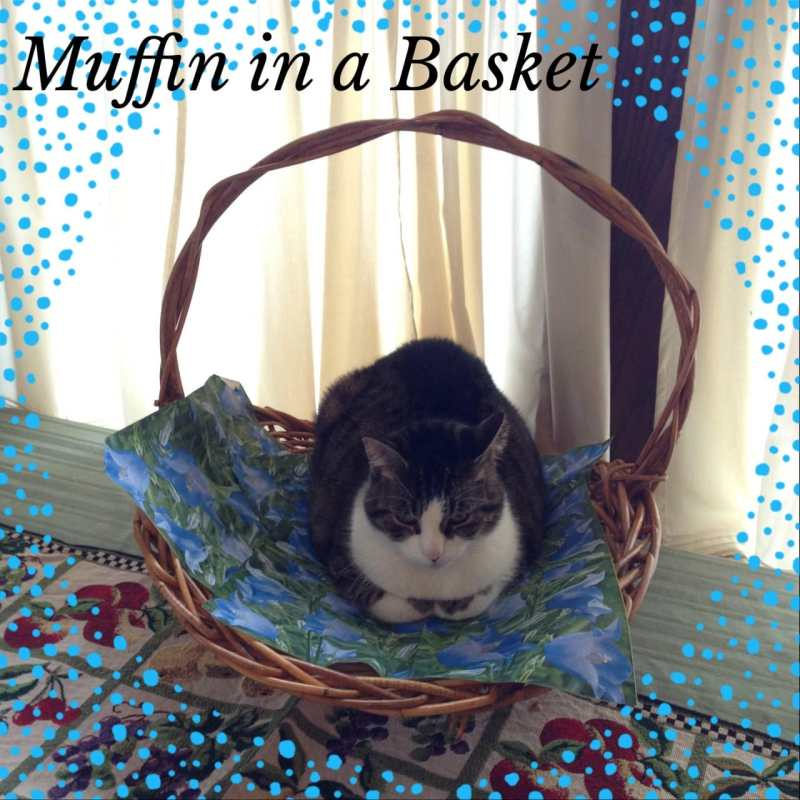 Muffin in a Basket on Katie Crafts; http://www.katiecrafts.com