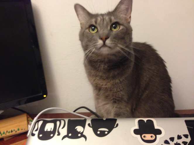 Mabel on Desk on Katie Crafts; http://www.katiecrafts.com