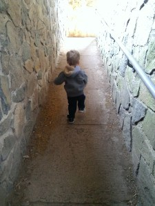 Walking (mostly running) to the top of the castle at Sleeping Giant.